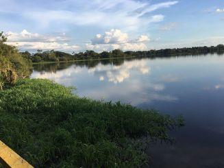 Pirahana lake